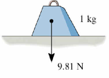 newton in kilogramm
